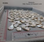 6386b keshi pearl 13-17mm x 16-22mm creamy white color undrilled.jpg